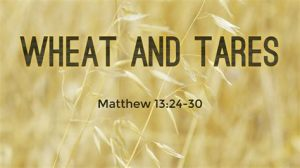 wheat and tares with scripture